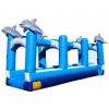 Adult Dolphin Slip N Slide