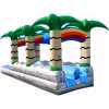 Run N Splash Rock Double Lane Waterslide