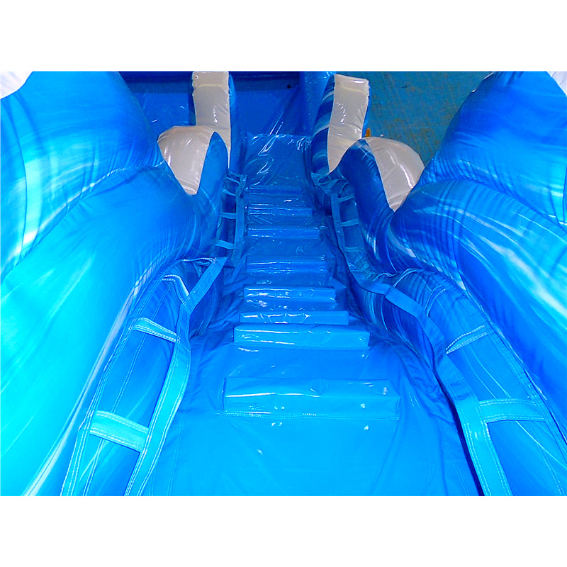 Dolphin Pool Water Slide