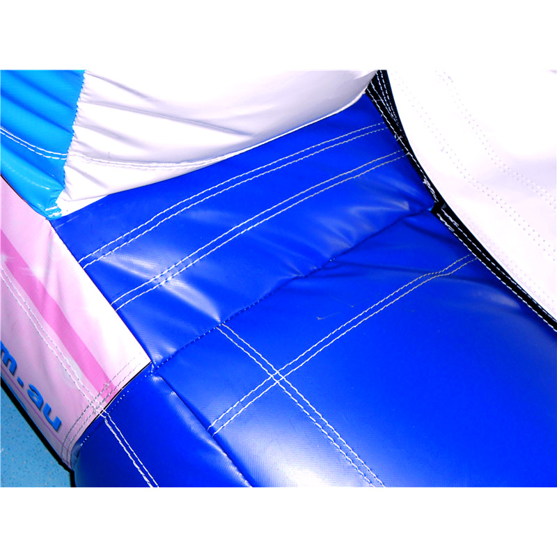 Double Inflatable Water Slide With Pool Inflatables Wet