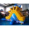 Kids Dolphin Garden Slide Combo