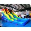 Sixteen Foot Dolphin Pool Slide