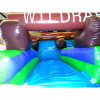 Wild Rapids Waterslide